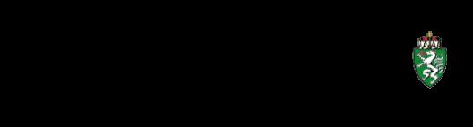 Assl Möbel